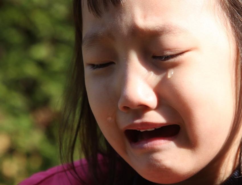 이다인 눈물 = 악어의 눈물? 6살 여자아이 성장기
