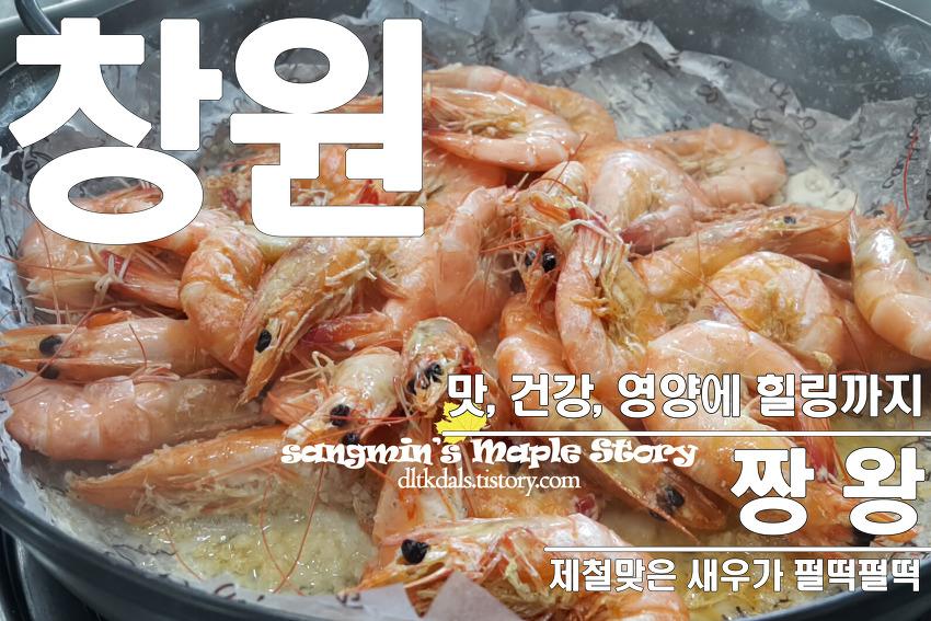 [경남 창원 여행]짱왕