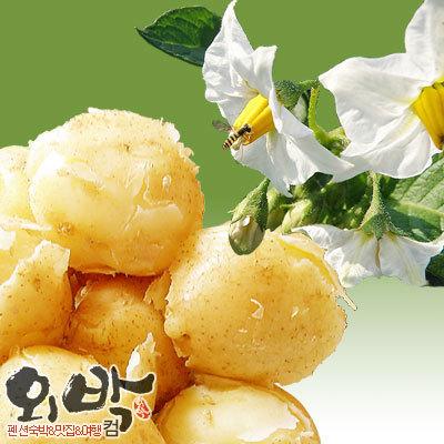 감자-칼로리_감자-1개-칼로리_감자-다이어트