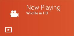 live_tile_Windows8_21
