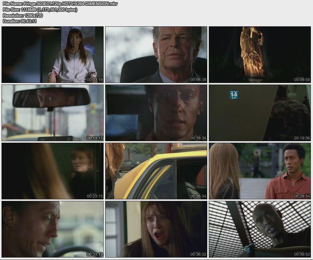 2010년 미드 방영일정, 프린지 시즌3, 하우스 시즌7, NCIS 시즌8