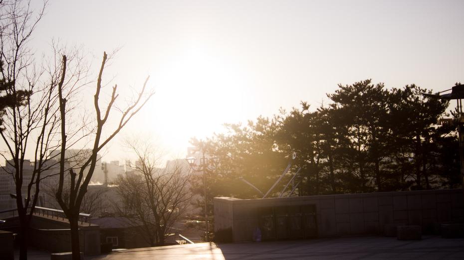 낙산공원 사진