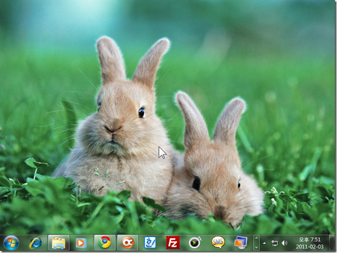 year_of_the_rabbit_win7_theme_01