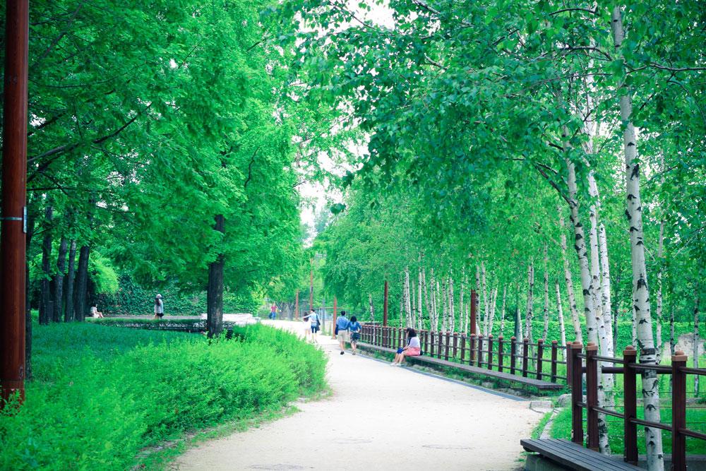 선유도 공원의 풍경들