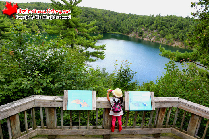 캐나다 오타와 퀘백 주 가티노 공원 Gatineau Park