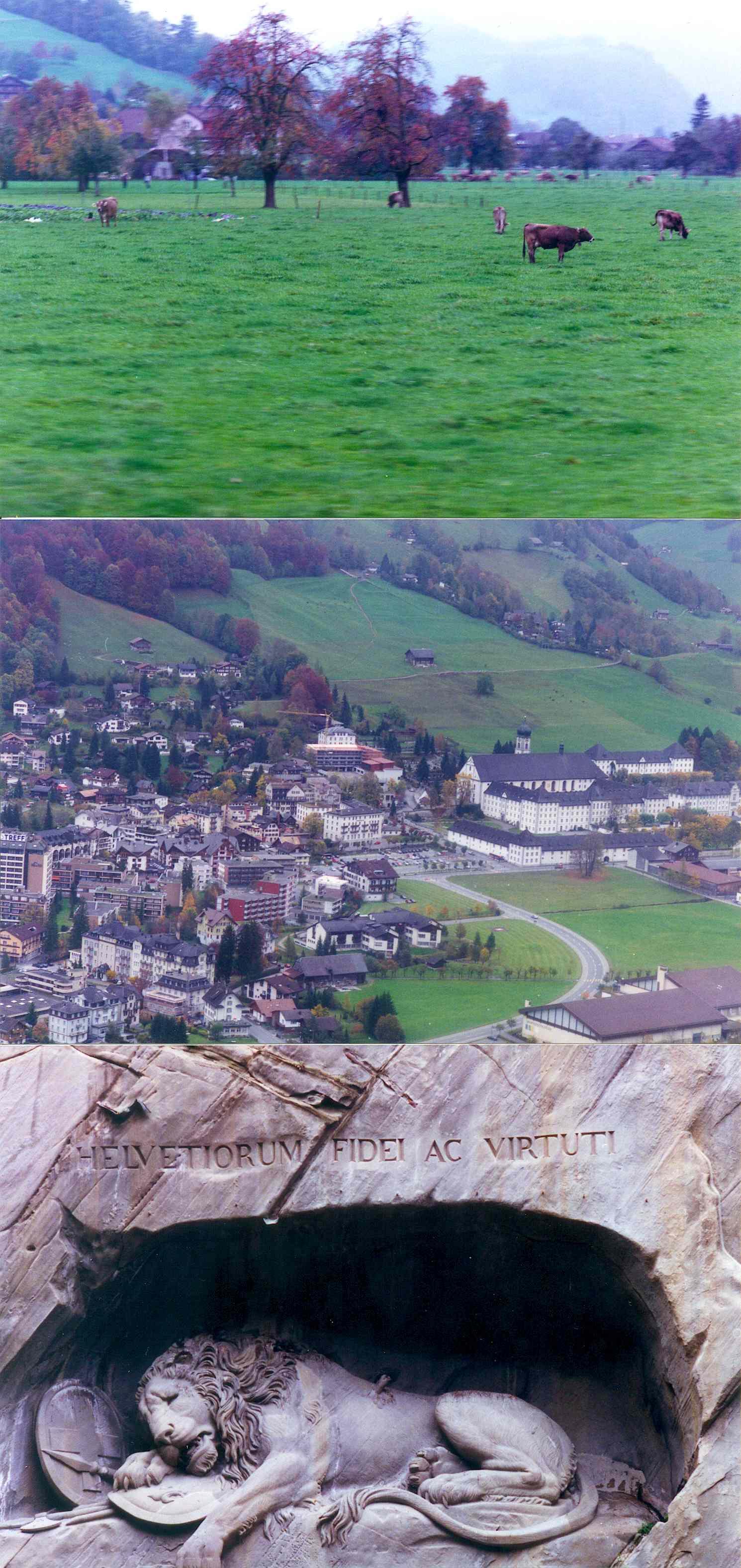 1996년 스위스