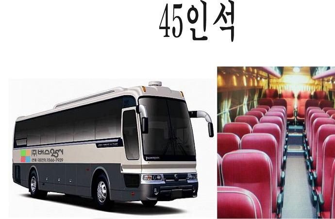 45인석 버스