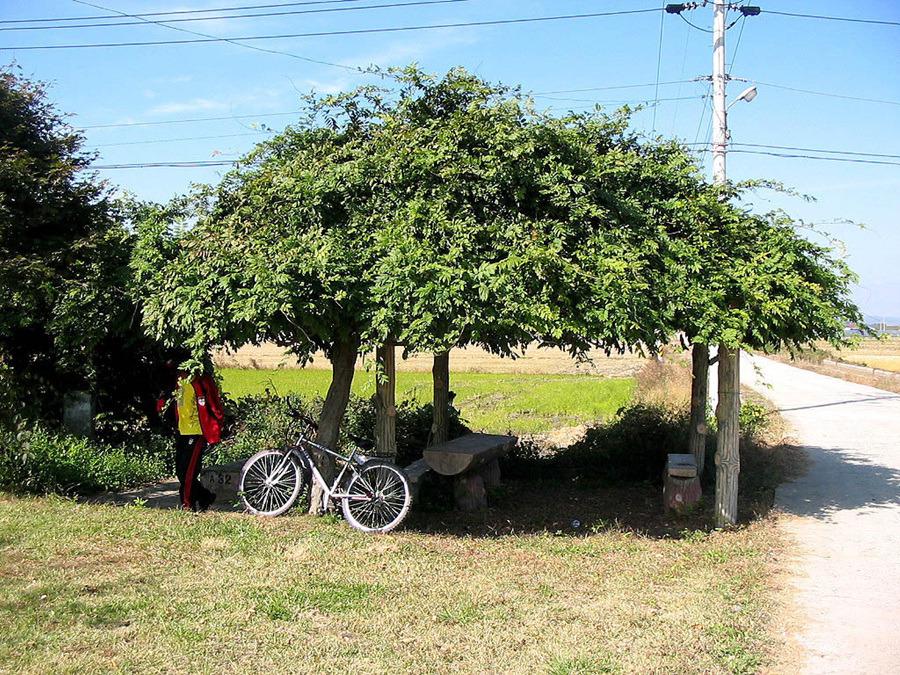 자전거로 달리자 - 6일차 ▷ 전라도 : 2374504D513C9000287A17