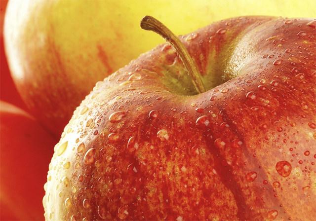다이어트식품 사과 식욕억제 음식