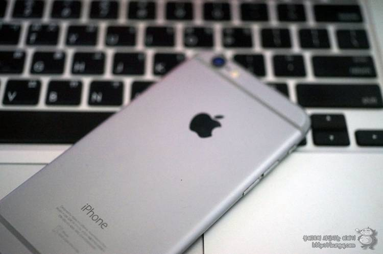 애플, 아이폰 6s, 아이폰 6s 플러스 리퍼폰 판매 시작