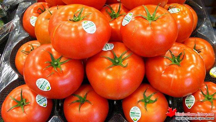 썬텍 토마토(SunTech tomato)