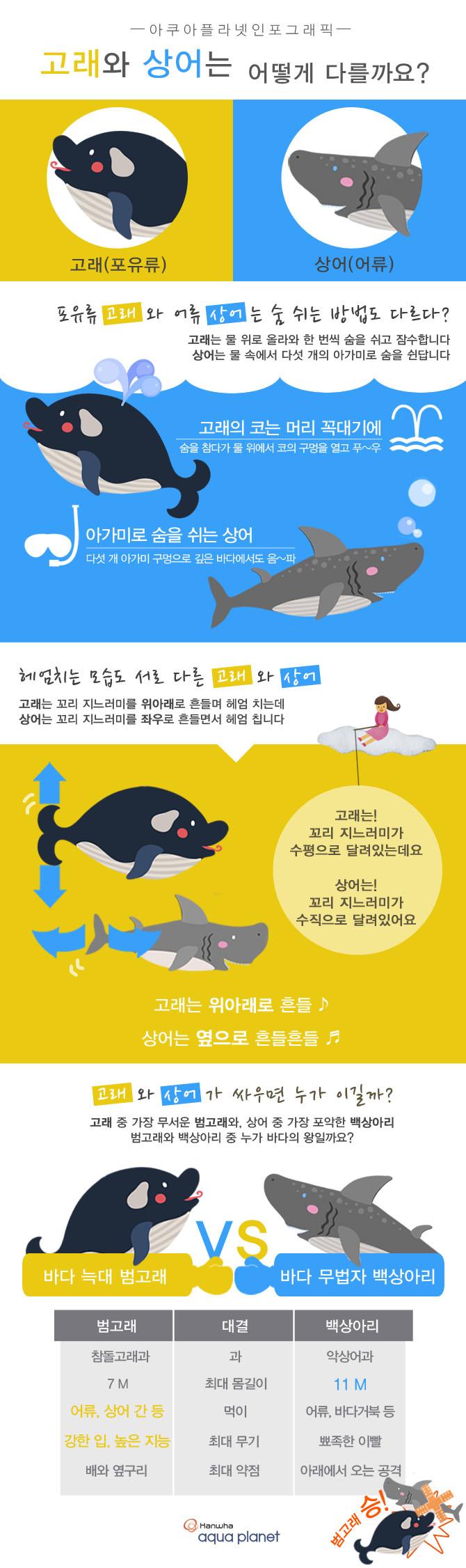 고래는 포유류 상어는 어류