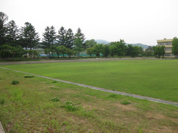 홍천정보과학고 잔디밭