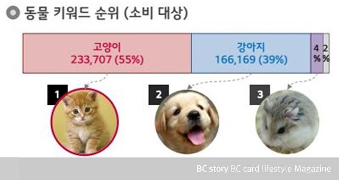소비 대상 동물 키워드 순위 고양이, 강아지, 햄스터 순