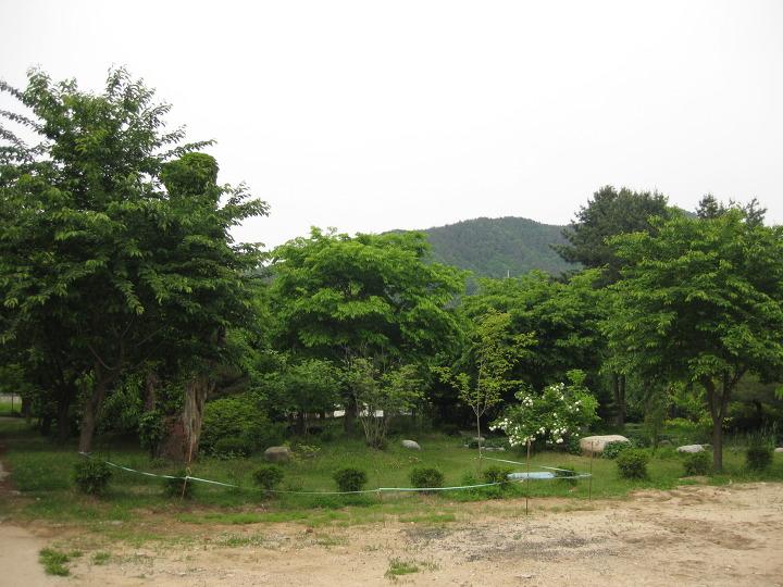 홍천정보과학고 학교숲