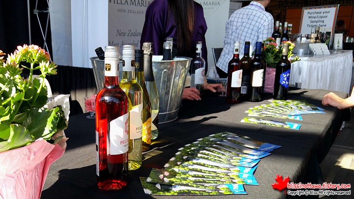 캐나다 최대 규모 '전국 여성 박람회' 와인 시음회