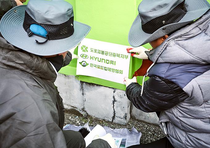 도로교통공단 충북지부 로드킬 예방 벽화 그리기