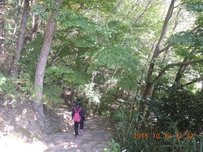 영암 볼거리 여행명소 도갑사