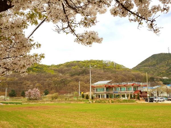 경기도 태국 불교 사원