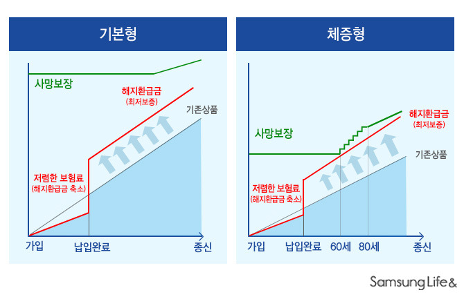 비교표 체증형 기본형 사망보장