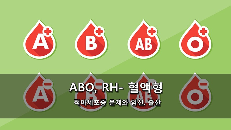 ABO 혈액형과 RH- 혈액형 - 적아세포증 문제와 임신, 출산