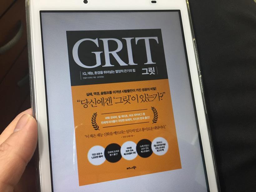 그릿 GRIT 자기계발 도서